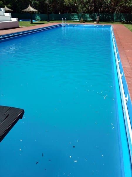 Que producto utilizar o que hacer para aclarar una piscina Cuanto esta una piscina