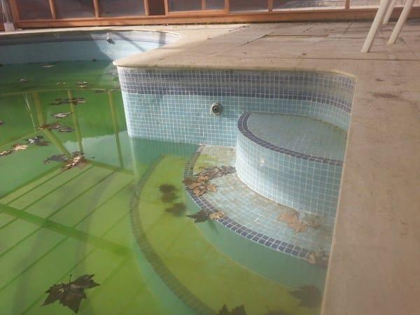 Cu l es el mejor revestimiento para una piscina de obra for Barredera piscina