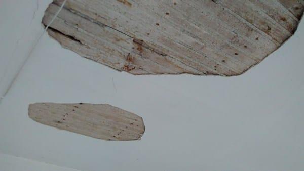 Reparar falso techo en vivienda antigua alba iler a for Opciones de techos economicos