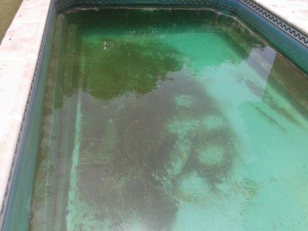 C mo puedo quitar unas manchas como verdes que me han for Como limpiar fondo piscina